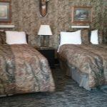 room 35 beds